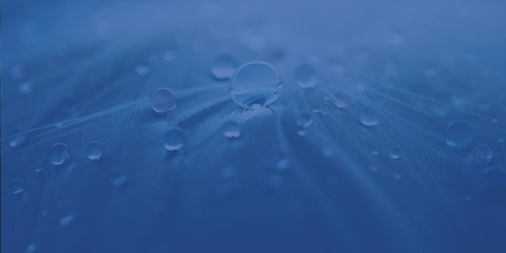 The EU Water Alliance